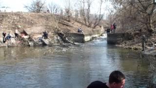 рыбалка на канале шья