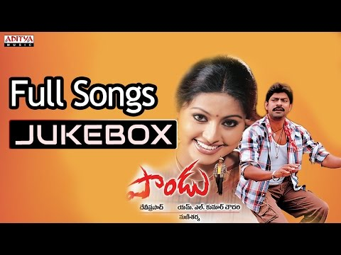 Video Paandu Telugu Movie Songs Jukebox ll Jagapathi Babu, Sneha download in MP3, 3GP, MP4, WEBM, AVI, FLV January 2017