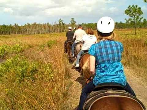 Horseback Riding & Nature Coach Tour at Forever Florida - Saint Cloud, Florida, USA
