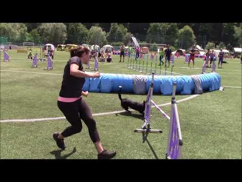 Say winning Moravia Open 2018 (видео)