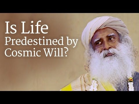 Is Life Predestined by Cosmic Will? 24 October 2014 10 AM