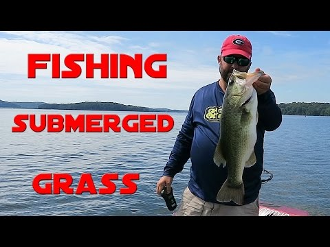 Bass Fishing - How to Fish Submerged Grass_Horg�szat vide�k