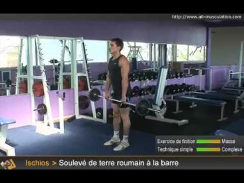 comment renforcer les muscles ischio-jambiers