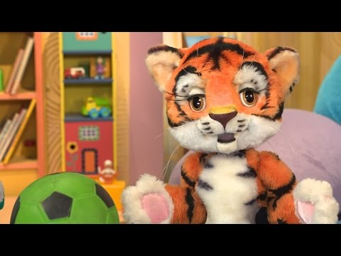 СПОКОЙНОЙ НОЧИ, МАЛЫШИ! - Машина времени - Обучающие передачи и развивающие мультики для детей (видео)
