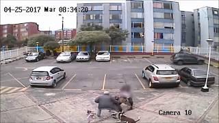 Wściekły pitbull rzuca się na husky'ego podczas spaceru. To był dosłownie moment