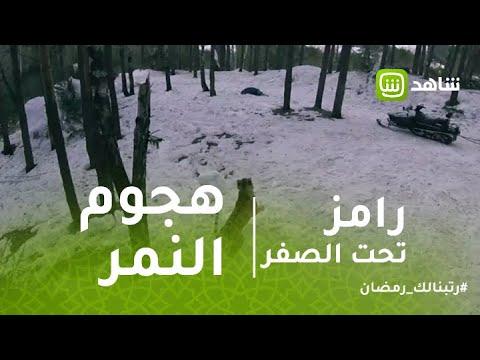 """""""رامز تحت الصفر"""": انزلاق خطير لنور على الثلج هربا من النمر"""
