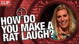 QI | How Do You Make A Rat Laugh?