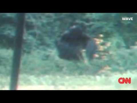 Bigfoot Caught on Cam at a Kentucky Homeowner's Backyard