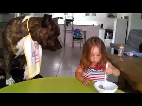 guardate cosa fa la padroncina con il suo cagnolino!
