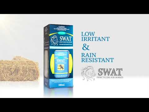SWAT fly protection for horses