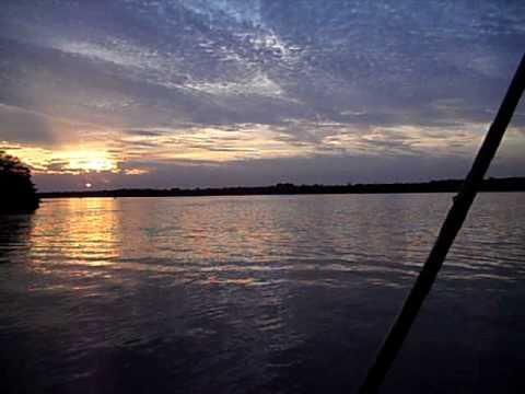 Pesca de piapara em Paulicéia