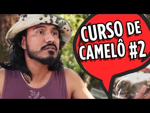 CURSO DE CAMELÔ #2
