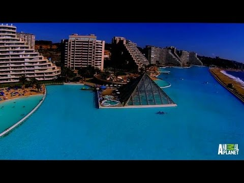 la piscina più grande del mondo!