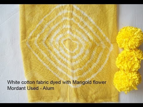 Natural Dye Workshop, Maya Organic India