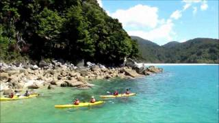 Nelson New Zealand  City new picture : Your Guide to Nelson - New Zealand