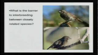 Darwin's Legacy | Lecture 5