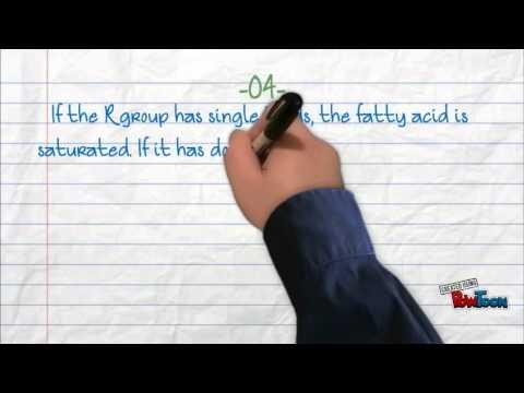 5 facts on lipids
