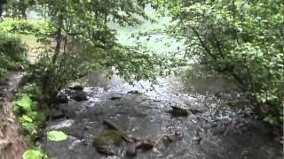 karagöl borçkaartvin eşsiz doğası  karagol borcka  artvin unique nature