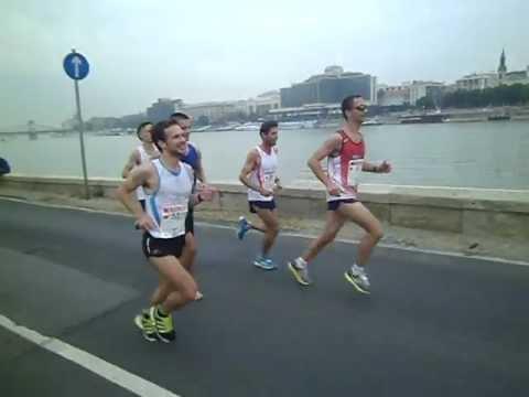 Bp Maraton 2012 – Sashegyi Gepárdok