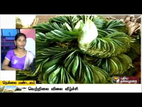 A-Compilation-of-Nellai-Zone-News-07-04-16-Puthiya-Thalaimurai-TV