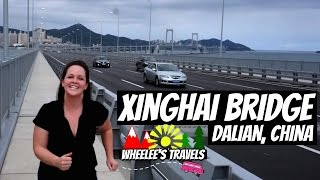 Dalian China  City new picture : Exercising in China | Storytime | Dalian, China | Wheelee's Travels
