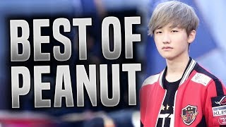 Video BEST OF PEANUT! - SKT T1 Peanut Montage ( The Best Lee Sin In The World! ) | LCK, Streams, SoloQ! MP3, 3GP, MP4, WEBM, AVI, FLV Agustus 2018