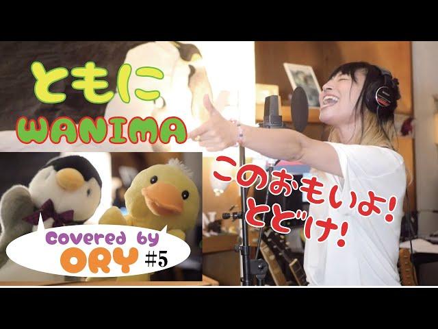 ともに /WANIMA (covered by 福山沙織)【女性が歌う】【アコースティックギターアレンジ】