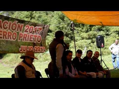 Gobierno de Angangueo reforesta Sierra Chincua