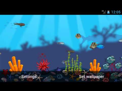 Video of Aquarium Live Wallpaper Free