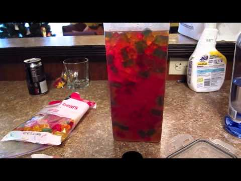 Jumbo Drunken Gummy Bears Best Vodka Recipe Yet Part 2