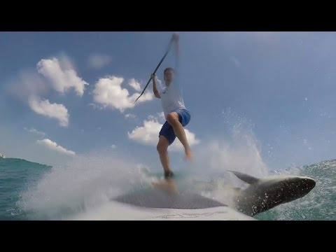 Man on Paddle Board Knocked Off By Shark