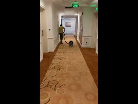 Kho Tư liệu Xây dựng - Cách vệ sinh thảm trải sàn hàng ngày trong khách sạn 5 sao | hút bụi cho thảm