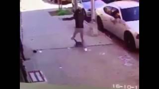 Kot psychopata atakuje psa! To co odj*bała właścicielka czworonoga przechodzi ludzkie pojęcie :D
