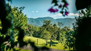 Bellingen Australia  City pictures : Promised Land Road, Bellingen, Australia by openhomeonline