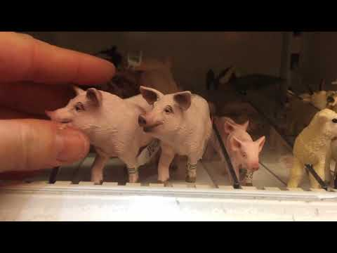Let's Look At Lots Of Schleich Toy Animal Friends! Learning Animal Names! Educational! Fun!