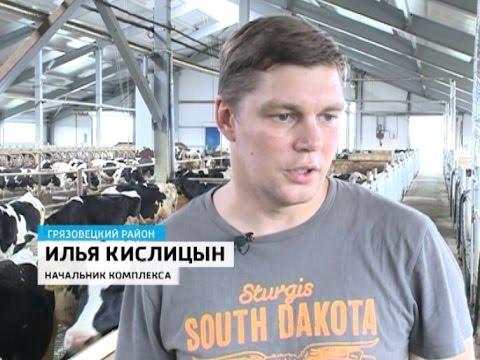 Вологодская область увеличивает объемы производства молока