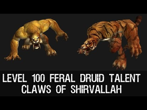 claws - Claws of Shirvallah - Level 100 Feral Druid Talent Druid Saberon Form.