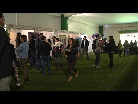 Apertura campaña Iquique 2016