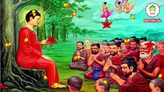 """Thập Thiện Nghiệp là 10 nghiệp lành.Những Lời Phật Dạy""""Nghiệp"""" là gì? """"Nghiệp"""" là tiếng người Trung Hoa dịch từ chữ Phạn Karma mà ra. Nó có nghĩa là tạo ác, hành động. Nghiệp có thể chia ra ba tánh cách: lành, dữ, hoặc không lành không dữ (vô ký). Lành, theo đạo Phật, nghĩa là có lợi ích cho chúng sinh trong hiện tại cũng như trong tương lai. Dữ, nghĩa là có hại cho chúng sinh trong hiện tại cũng như trong tương lai.Đức phật dạy con người phải nên giử thập giới ( thập thiện ) để có được phước báu nhân thiên mà tu học phật pháp. bởi thiếu phước báu nhân thiên thì chẳng thể tu tập giải thoát được... like và đăng ký để theo dõi các video pháp âm mới nhất từ MP3 Phật Giáo."""