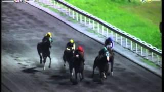 RACE 2 SWEET DADDY'S GIRL 10/03/2014