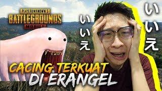 Video DAPAT SURPRISE DARI CACING TERKUAT DI ERANGEL!! - PUBG Mobile Indonesia MP3, 3GP, MP4, WEBM, AVI, FLV Mei 2019