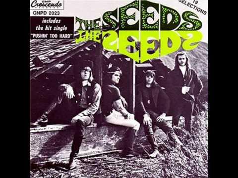 The Seeds - Pushin' Too Hard lyrics