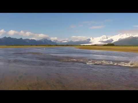 Alaska Bear Adventures 2014