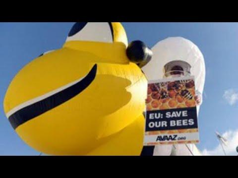 Η Ευρωπαϊκή Ένωση «σώζει» τις μέλισσες