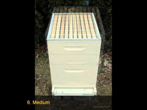 How to Set Up a Beehive for Beginner Beekeepers