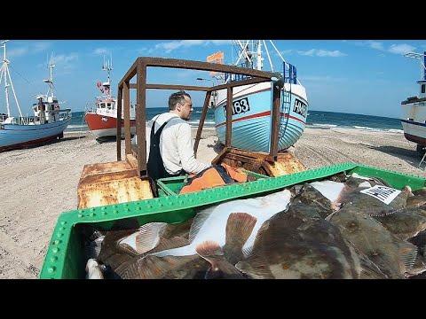 Δανία: Αλιείς μικρής κλίμακας συνεταιρίζονται και αναπτύσσονται…