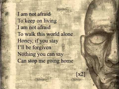 My Chemical Romance - Famous Last Words (lyrics)