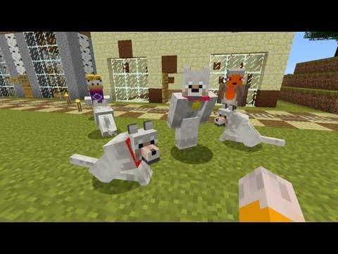 pet - Part 112 - http://youtu.be/BWyWha18eU4 Welcome to my Let's Play of the Xbox 360 Edition of Minecraft. These videos will showcase what I have been getting up ...
