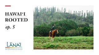 Hawaii Rooted: Lanai Through My Eyes