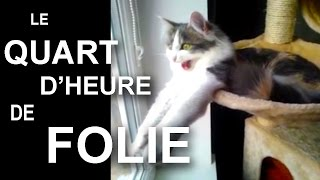 Video LE QUART D'HEURE DE FOLIE - PAROLE DE CHAT MP3, 3GP, MP4, WEBM, AVI, FLV Mei 2018